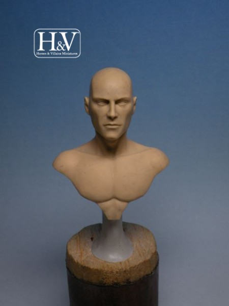 Anatomical Bust